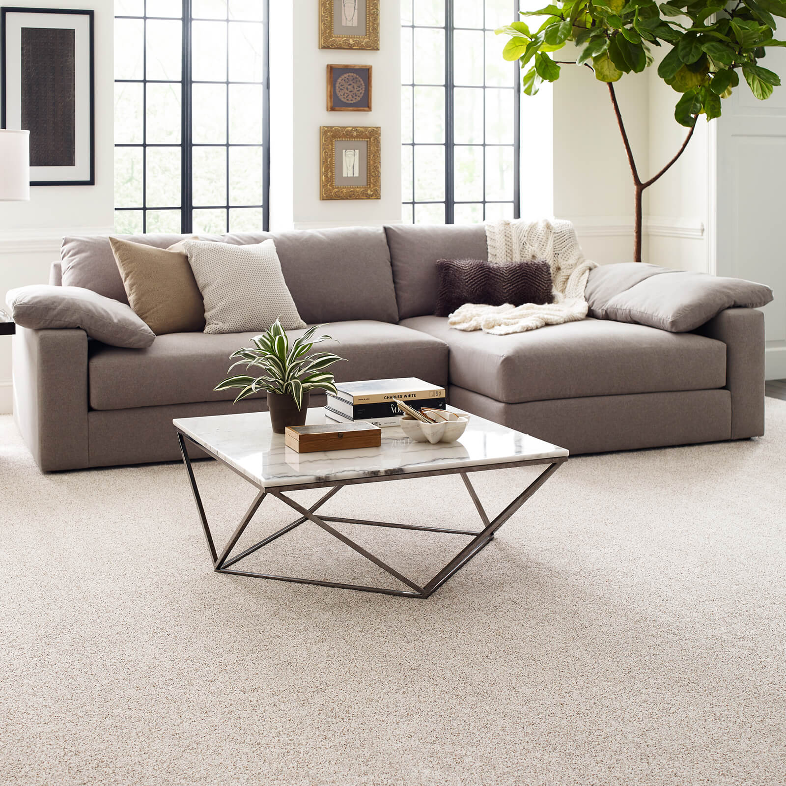 Carpet in living room | Floorida Floors
