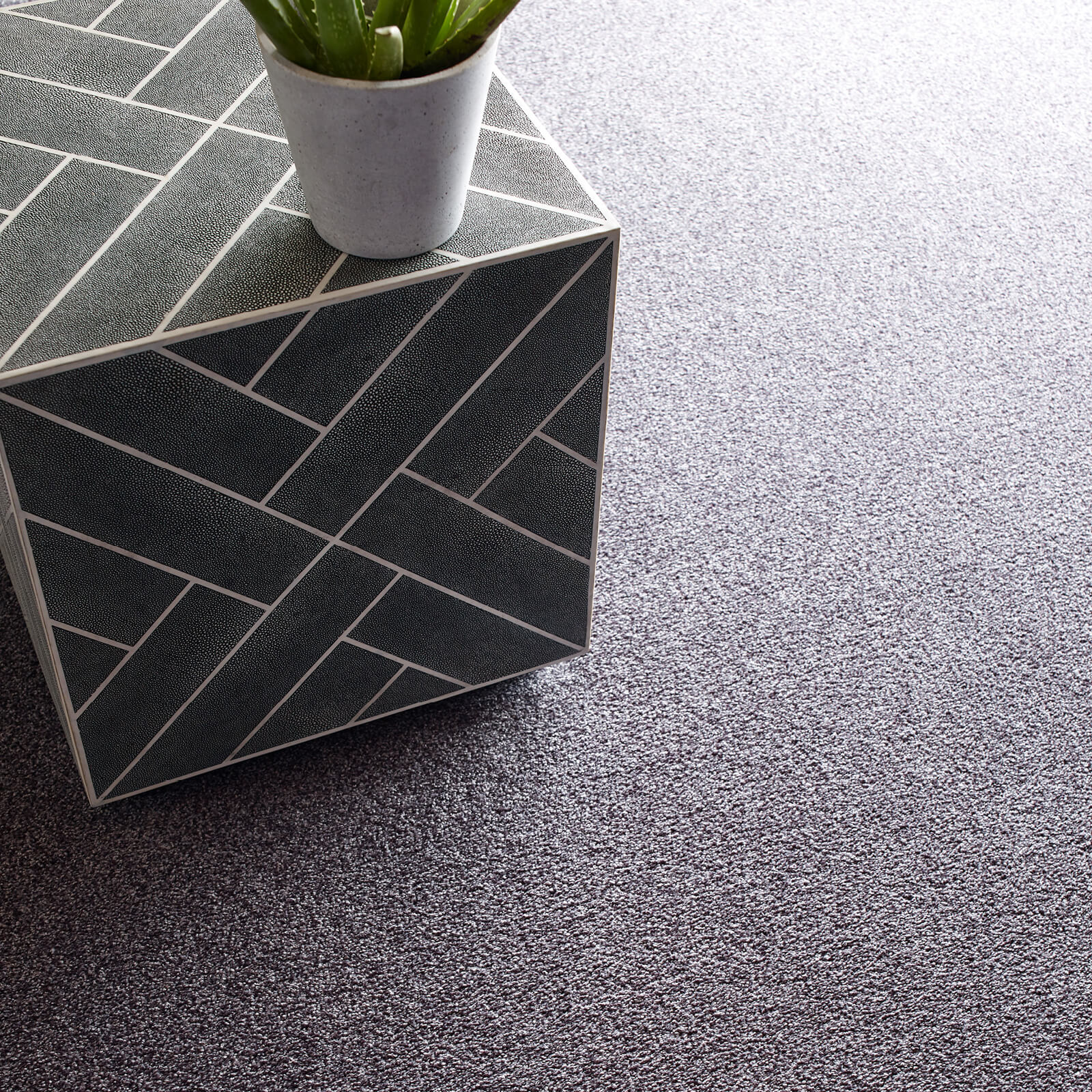 Grey Carpet flooring | Floorida Floors