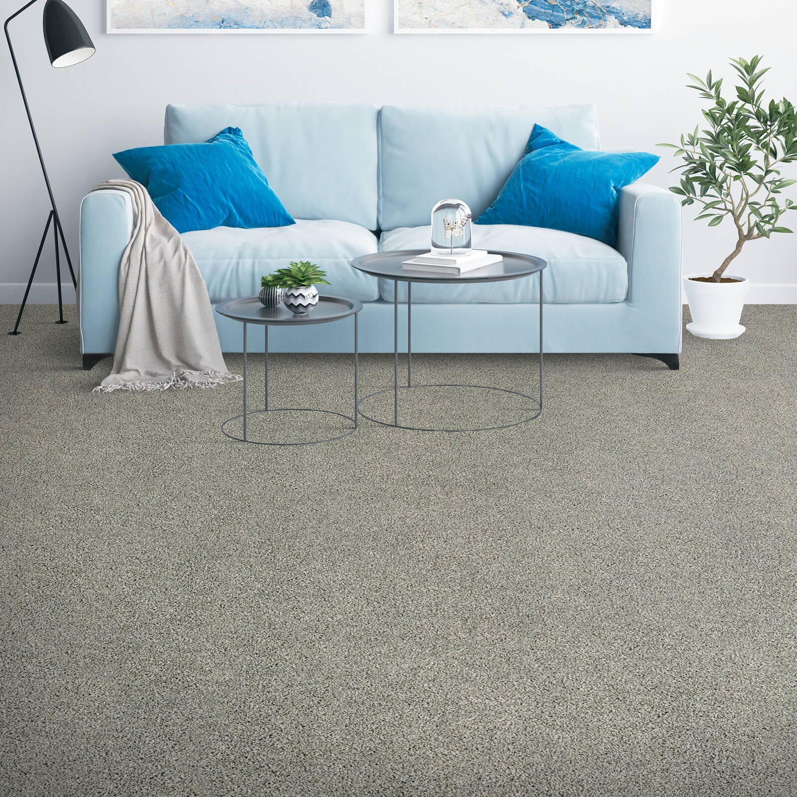 Couch on grey Carpet | Floorida Floors