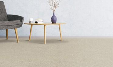Mohawk Carpet | Floorida Floors