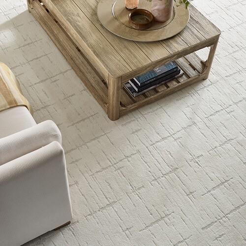 Shaw carpet | Floorida Floors