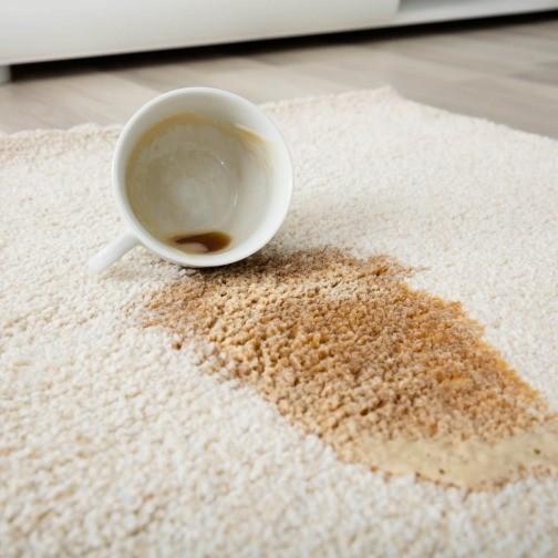 Carpet cleaning tips | Floorida Floors
